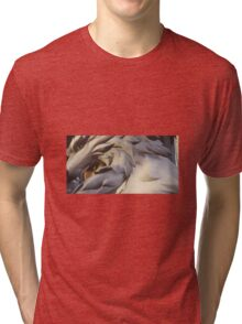 Hanzo Amatarasu Tri-blend T-Shirt