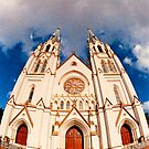 Cathedral in Savannah by Bill Wetmore