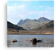 Langdale Merry Canvas Print