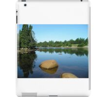 The Tranquil Pond iPad Case/Skin