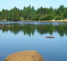 The Tranquil Pond Sticker