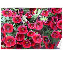 Red Flowers For You! Poster