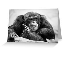 You talking to me? Greeting Card
