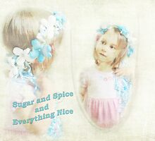 Sugar and Spice  by Susan Werby