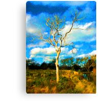 One Bare Tree in the Evening Light Canvas Print