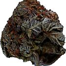 Chronic Bud #103 by sensameleon