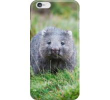 Wombat during the day iPhone Case/Skin