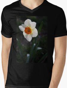 White Daffodil Mens V-Neck T-Shirt