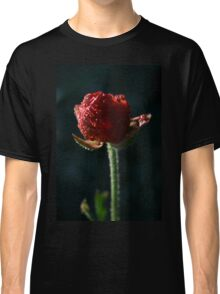 Spring time bloom, with lighting affects  Classic T-Shirt
