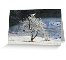 Crystal apple tree Greeting Card
