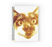 Golden cat  Spiral Notebook
