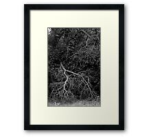 Gothic Deadwood Tree Framed Print