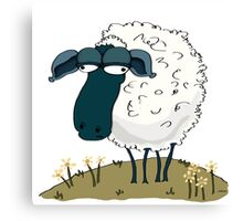 An Indifferent Sheep Canvas Print