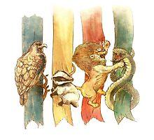 Hogwarts Houses Photographic Print