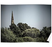 Spire through trees Poster