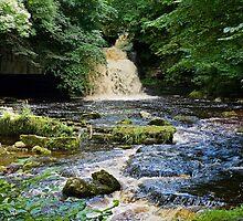 Waterfall by John (Mike)  Dobson