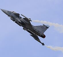 Gripen by TomGreenPhotos