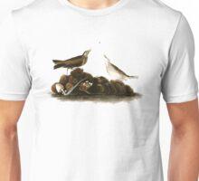 Brown Titlark (now American Pipit) Unisex T-Shirt