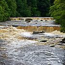 Aysgarth Falls by John (Mike)  Dobson