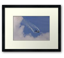 Spot the Falcon Framed Print