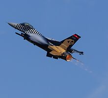 Falcon Afterburner by TomGreenPhotos