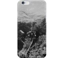 Wrack im Roten Meer iPhone Case/Skin