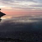Silky Morning on the Lake - Pink and Purple Serenity by Georgia Mizuleva