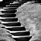Deco Steps by Laurie Allee