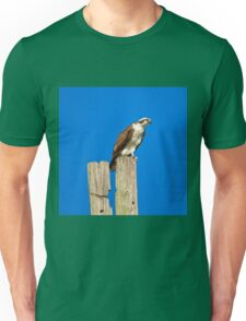 Osprey Giving Warning Unisex T-Shirt