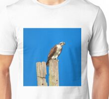 Osprey Giving Warning Unisex T-Shirt