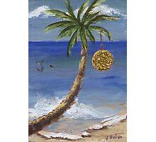 Christmas Palm Tree Photographic Print