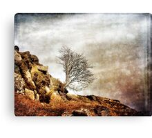 Catch Me When I Fall Canvas Print