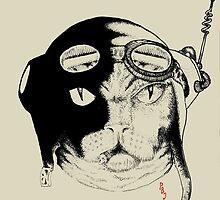 The Flyer Wobble Ur by Pete Janes