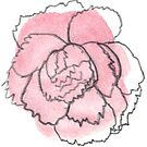 Carnation #2 - sticker only by Vicky Webb