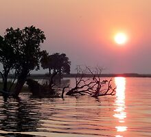 Chobe River Sunset by Graeme  Hyde