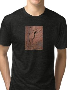 Red Rock Abstract Tri-blend T-Shirt