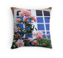 Reflets de roses Throw Pillow