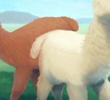 Alpacas on the meadow Sticker