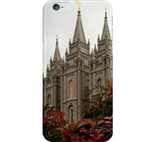 Salt Lake City Temple Angle iPhone Case/Skin