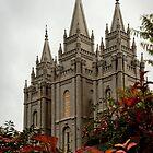 Salt Lake City Temple Angle by LaRae55