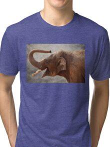 Baby Elephant Tri-blend T-Shirt