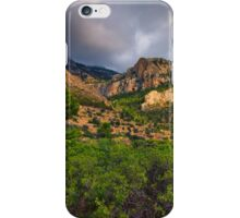 Bush tree and mountain under stormy skies iPhone Case/Skin