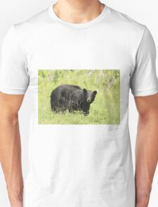 Black bear in a green field T-Shirt