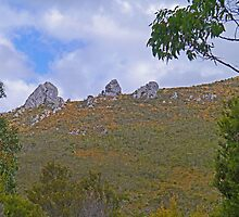The Thumbs, Southwest National Park, Tasmania, Australia by Margaret  Hyde