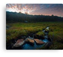 This Land Canvas Print