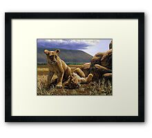 Double Trouble - African Lion Cub Painting Framed Print
