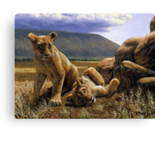 Double Trouble - African Lion Cub Painting Canvas Print