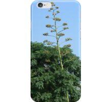 Heavy Bloom Stalk Leans on Tree iPhone Case/Skin