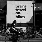 Bikes by Danit Elgev