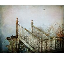 Stairway To Heaven  Photographic Print